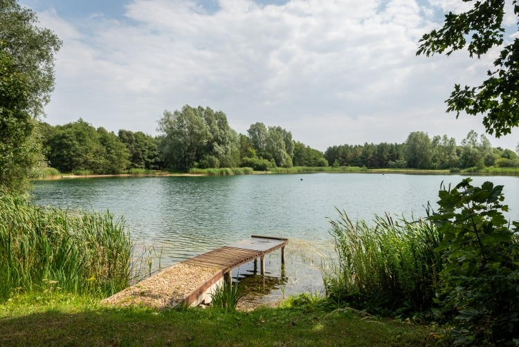 picture_of_Wykeham_fishing_lakes